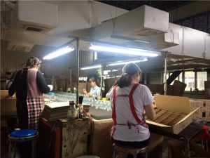 perfume bottle factory